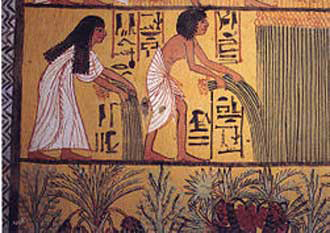 Ancient Egyptians harvesting flax (by pulling, not cutting). From a tomb in Kom-el Ahmar, Egypt.